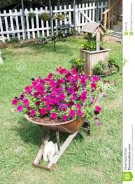 Resultado de imagen para petunias en jardines