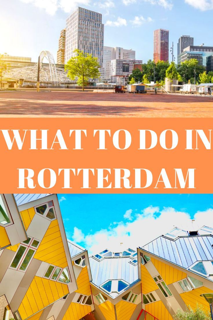 How To Get From Rotterdam Cruise Terminal To Amsterdam