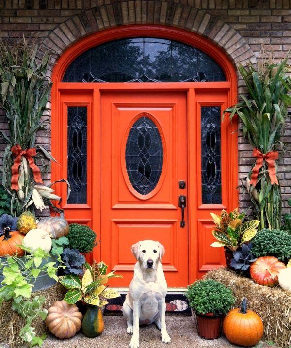 Ярко-красные входные двери из дерева