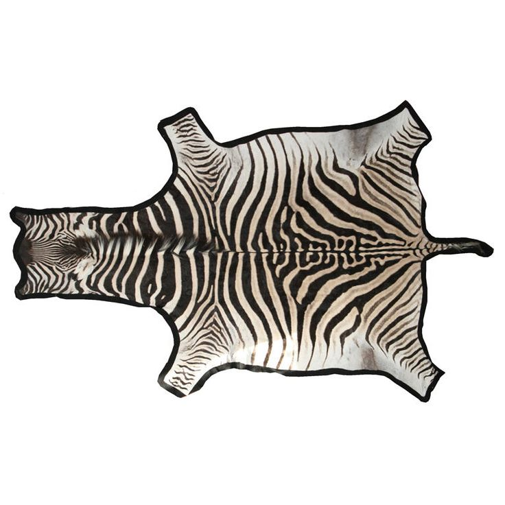 Best 25+ Zebra Skin Rug Ideas On Pinterest