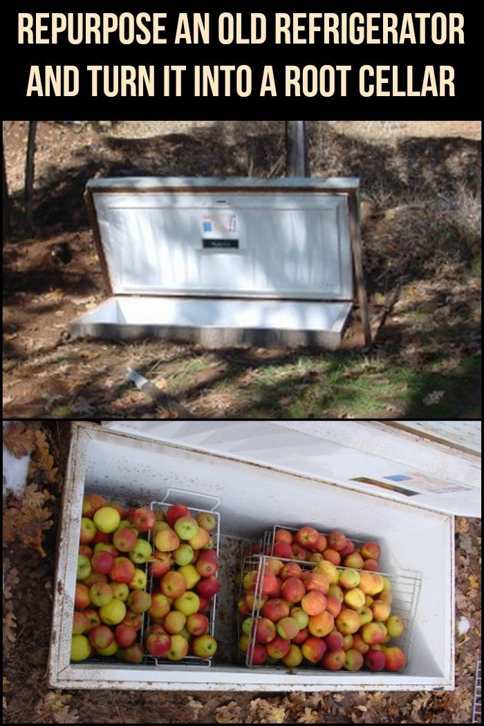 Instead of throwing your old refrigerator away, convert it into a root cellar and use it to store produce! #SurvivalistRootCellar