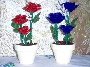 vörös és kék rózsa