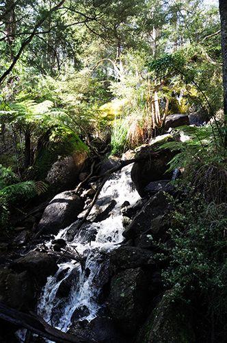 Ship Rock Falls, Hoddles Creek, Vic, AU