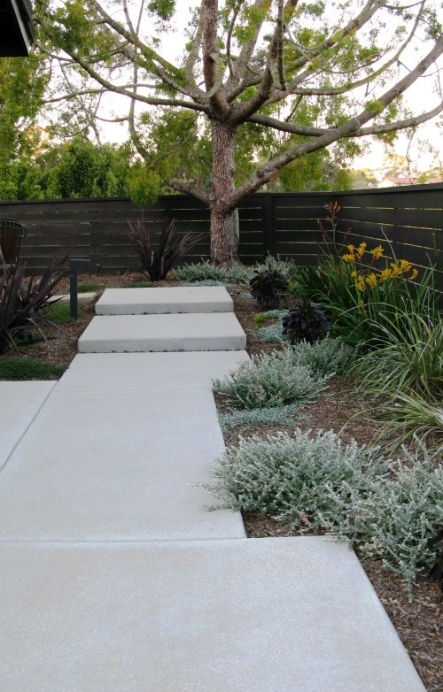 Concrete walkway, wood fence with minimal planting