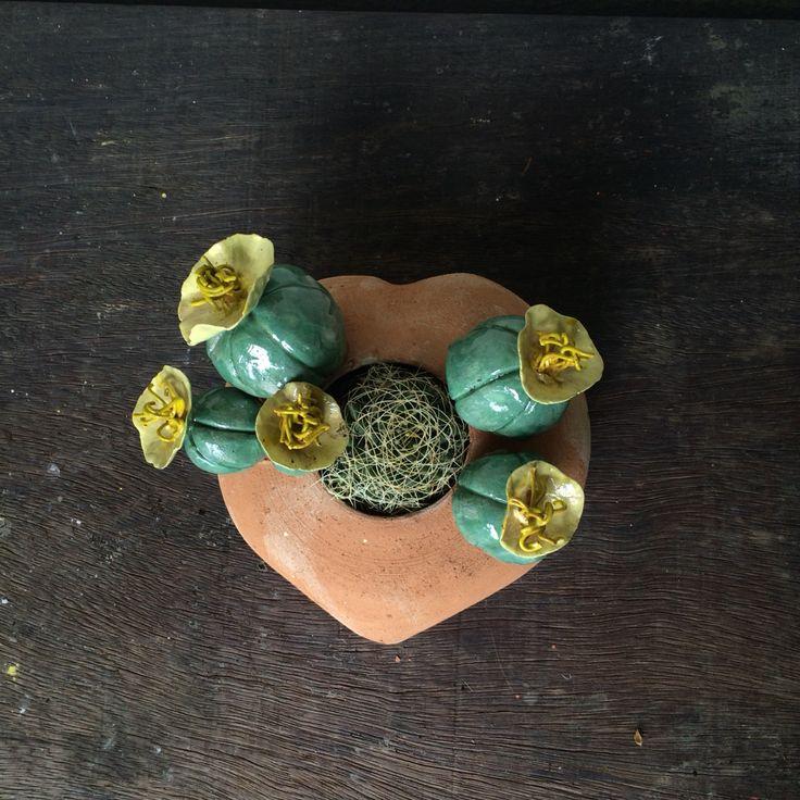 #6#cuoredicactus #ceramicacti #handmadeinitaly #madeinitaly #zanellazine