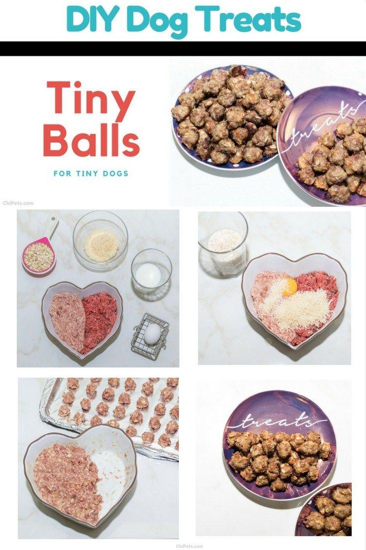 Tiny Balls For Tiny Dogs Diy Dog Meatball Treat Recipe Dog
