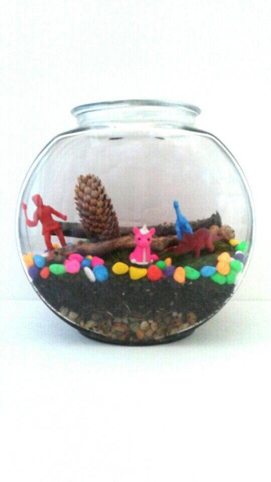 17 best images about terrariums fish bowls on pinterest for Best fish for bowl
