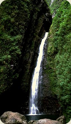 Hawaii Waterfalls on Oahu are like little secret gems in the lush jungles of the island. You have to work to get a glimpse of some, while a short hike will grant you a great reward to see the others.