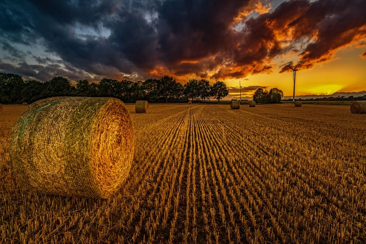 Photograph Burning Sky by Eric Geise on 500px