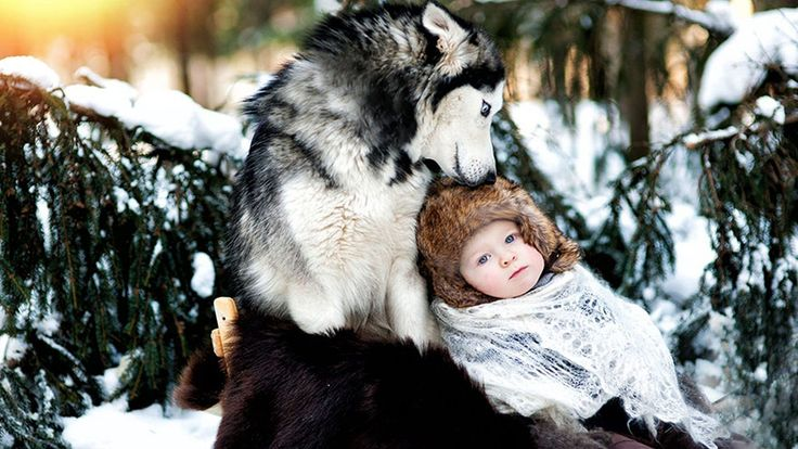 22 fotos maravilhosas de cães e crianças (10)
