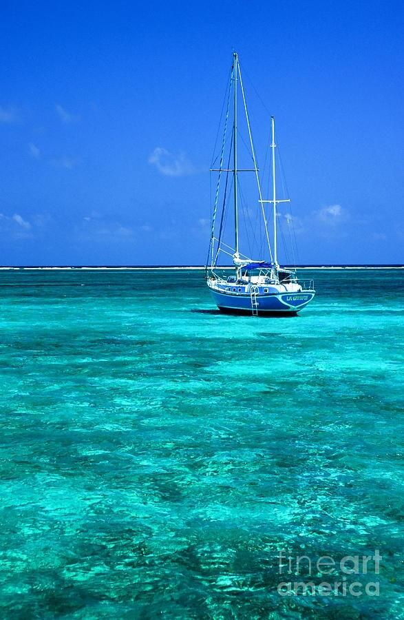This water. Ambergris Caye, Belize