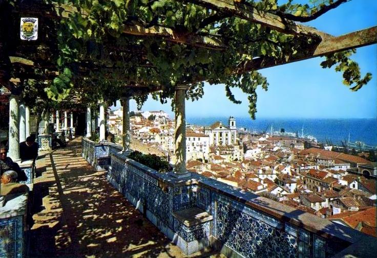 The view from Miradouro de Santa Luzia, Lisbon, Portgual.