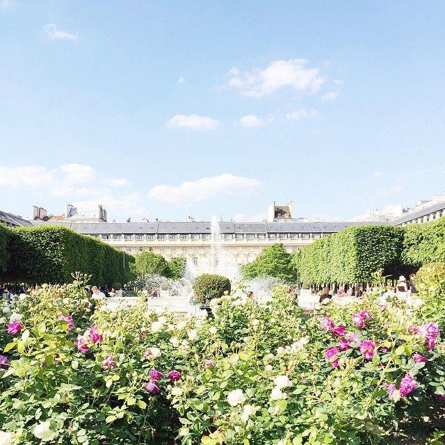 Carin Olsson : Jardins du Palais-Royal