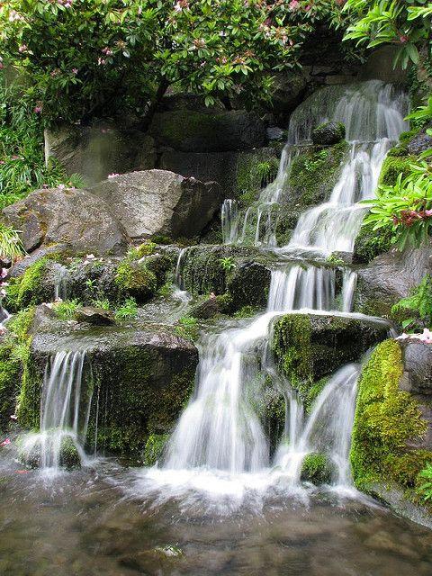 Crystal Springs Portland Oregon | Waterfall at Crystal Springs Rhododendron Garden Portland Oregon ...
