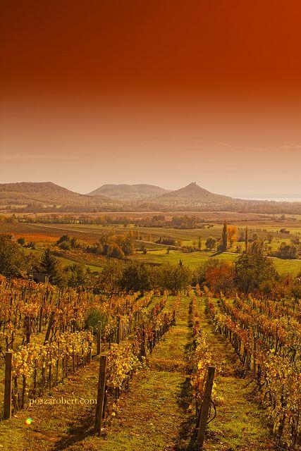 Ez nem Toscana. Ez a Balaton-felvidék. - Posza Róbert hangulatfotói