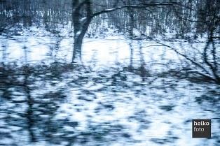 sneeuw en bos vanuit de trein 'blare witch project stijl'