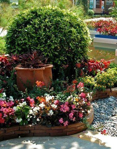 ОФОРМЛЯЕМ ПАЛИСАДНИК Подбор цветов Основное правило – это простота. Это значит, что все цветы должны быть красивыми и неприхотливыми в уходе. Среди разнообразия растений, предлагаемых в магазинах и питомниках, следует выбирать такие, которые будут обеспечивать беспрерывное цветение в вашем палисаднике с первых весенних дней до поздней осени. Одни цветы отцветают — другие зацветают. Ошибки начинающих Начинающие садоводы часто допускают ошибку, выбирая для дизайна много цветов на высоких…