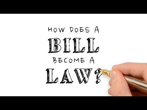 This is a great video that I could show my students if I taught a US Government class. The process of a bill becoming a law is very long, complicated and confusing, however, this video clearly outlines the process, which would help students better understand how it works. I would definitely show this video to my students, because it makes the entire process easier to explain.