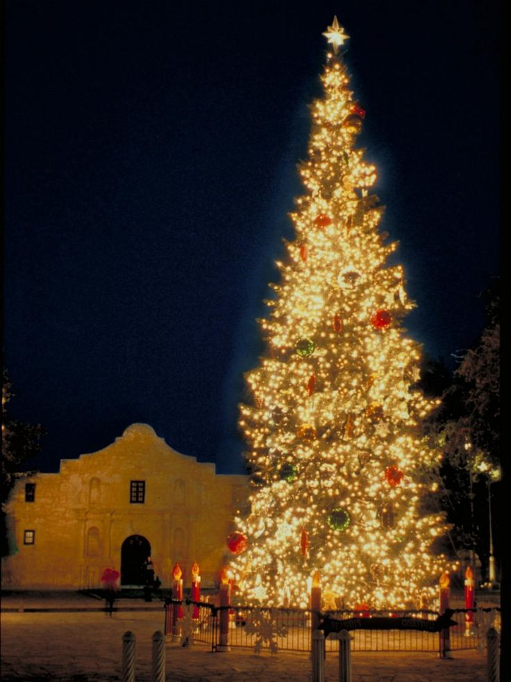 661 best the alamo images on pinterest the alamo texas for Best christmas towns on east coast