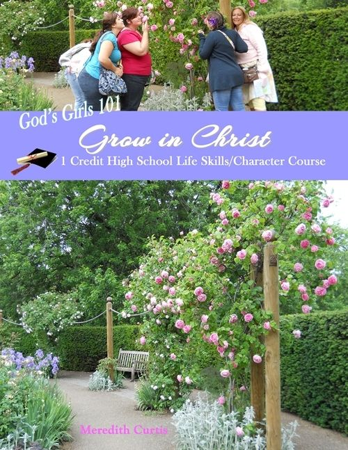 God's Girls 101: Grow in Christ - Powerline Productions   God's Girls   High School Curriculum   CurrClick