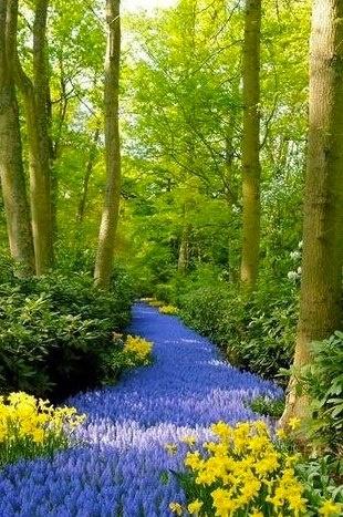Notre #planete est belle, protégeons la.  Pour admirer d'autres photos, rejoignez notre communauté Facebook : http://on.fb.me/ThnI7A