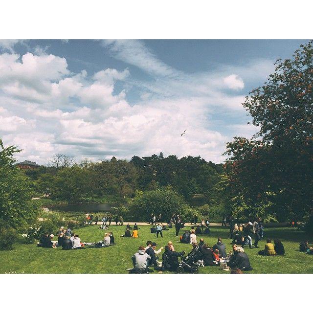 The Botanical Garden in Copenhagen  #botaniskhave #botanicalgarden #copenhagen #københavn #nørreport #beautiful #view