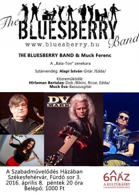 Plakát104: Alapi István & The Bluesberry Band Székesfehérváro...