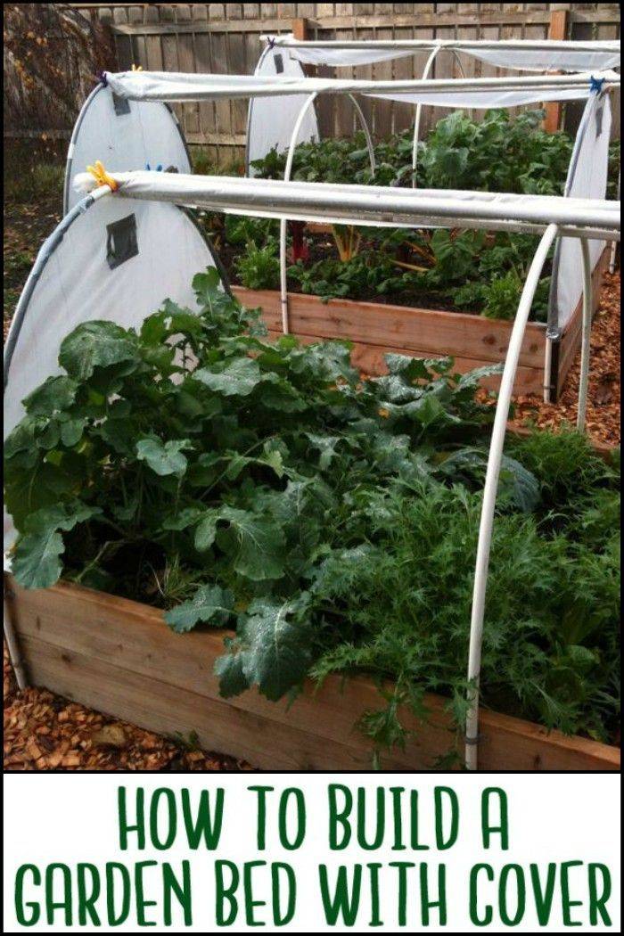 This Raised Garden Bed Cover Protects Your Produce All Year Around