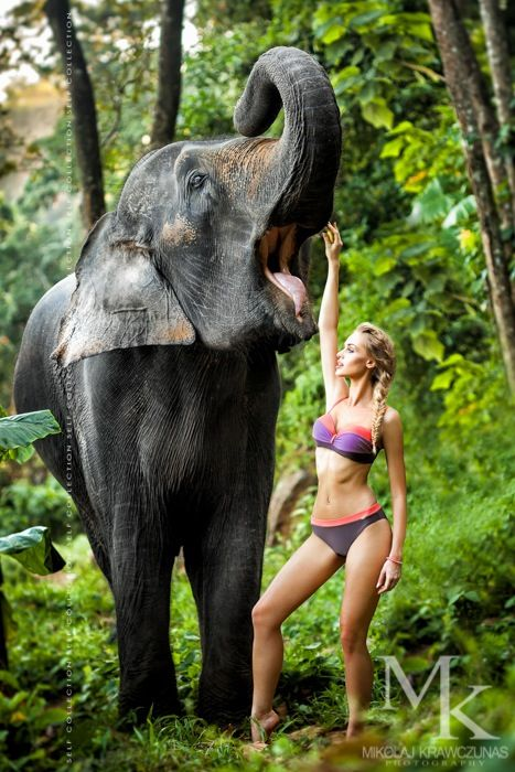 beautiful nude woman riding an elephant