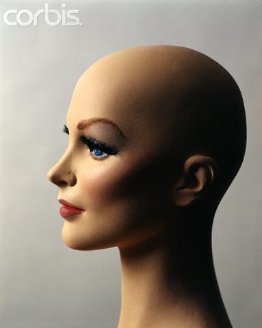 1970s Profile Of Bald Female Mannequin Head