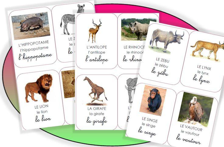 Les animaux de l'Afrique - Pépinette à l'ecole