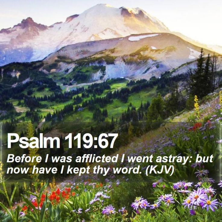 Psalm 119:67  Before I was afflicted I went astray: but now have I kept thy word. (KJV)  #ministry #mentor #photography #honesty #positivequotes #dailybibleverse  #motivation #motivationalquotes #verseoftheday #bibleverse #bible #jesus #word http://www.bible-sms.com/