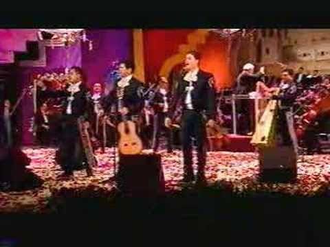 Pajarillo - Mariachi Vargas