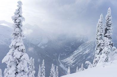Parcs Canada - Parc national des Glaciers - Parc national du Canada des Glaciers