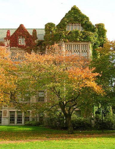 Fall @ the University of Washington, Seattle, WA