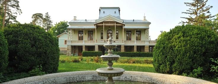 Polizu Manor - Romania (Iasi)