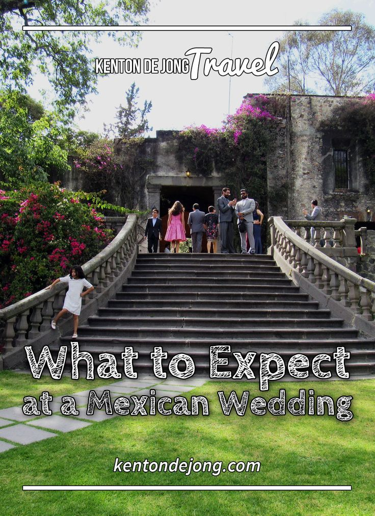 What to Expect at a Mexican Wedding · Kenton de Jong Travel - I had a wonderful trip to Mexico, and I saw and learned more than I expected. While most of my trip was full of creepy, strange and downright bizar...