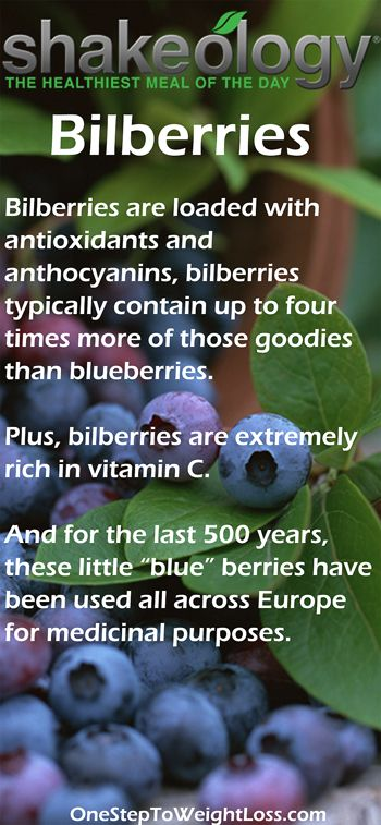 "For the last 500 years, these little ""blue"" berries have been used all across Europe for medicinal purposes! The Shakeology nutrition facts is packed full of goodness! http://www.tipstoloseweightblog.com/shakeology/shakeology-nutrition-facts #ShakeologySuperfoods  Want more business from social media? zackswimsmm.tk"