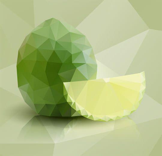 polygonal_illustration