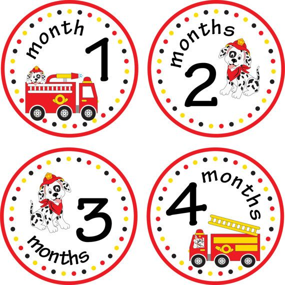 Just Born Baby Gift Ideas : Monthly baby stickers month make great