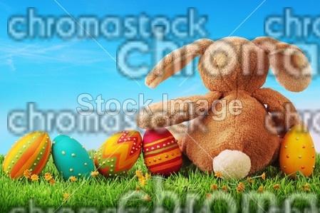 Wielkanoc, jajka, królik     nr21091165