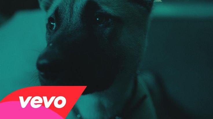 A tale of puppy love from director Ryan Staake for J Cole's track Wet Dreamz. Production company: Pomp&Clout