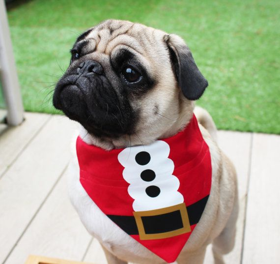 Traje navidad navidad moda mascotas perro bandanas christmas christmas