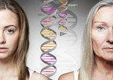 Using DNA Testing in Your Adoption Search