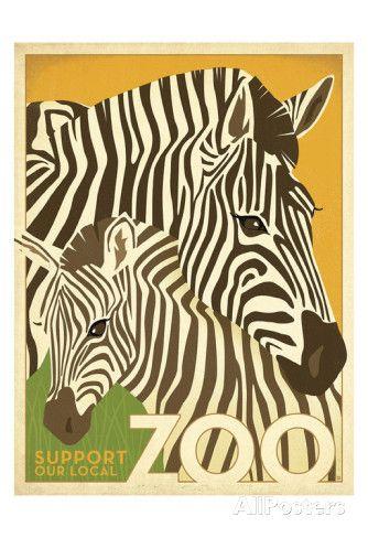 Zoo Zebra Kunstdruck von Anderson Design Group - bei AllPosters.ch