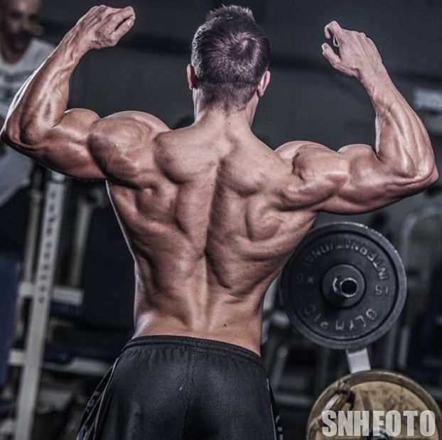Awesome back on Ryan Terry | Ryan Terry | Pinterest ...
