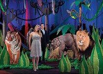 Jungle Allure Theme Party