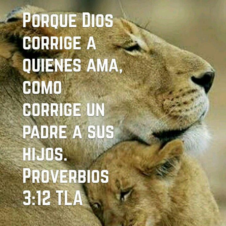 Proverbios 3:12