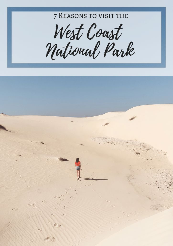7 reasons to visit West Coast National Park