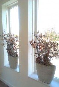 woning in landelijke sfeer met op de vensterbank 2 betonlook bakken met oa zijde Magnolia's